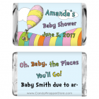 Miniature Oh the Places You'll Go Baby Shower Candy Wrapper MINIBS269